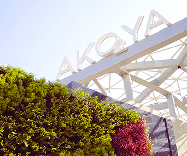 AKOYA oxygen  at Dubailand by DAMAC Properties